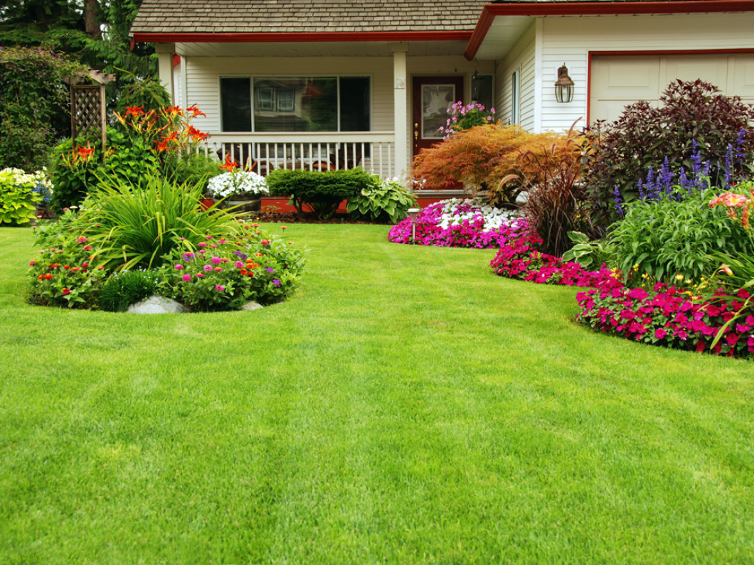 Make the Most of Your Yard